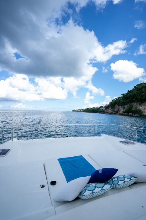 Leopard Leopard 47ft between personal and professional Castries