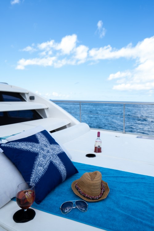 Hire Catamaran with or without skipper Leopard Castries