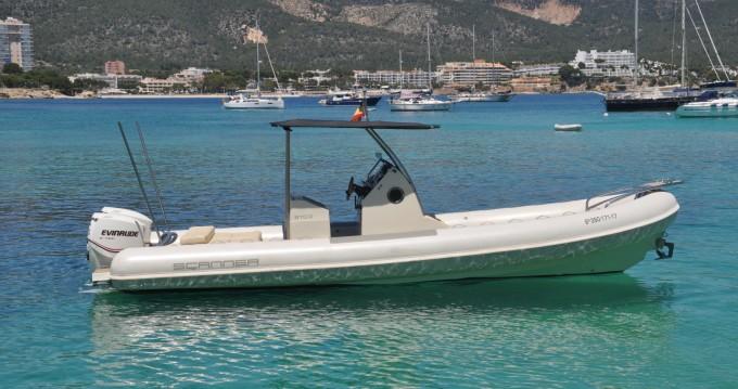 Boat rental Palma de Mallorca cheap 870D