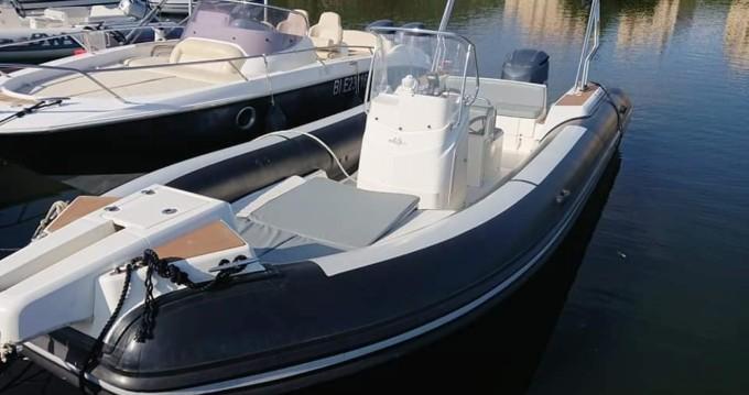 Boat rental Capelli Tempest 770 in Saint-Florent on Samboat