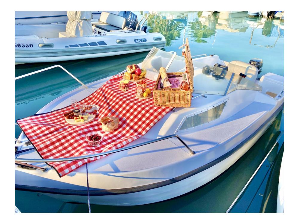 Boat rental Saint-Laurent-du-Var cheap 450
