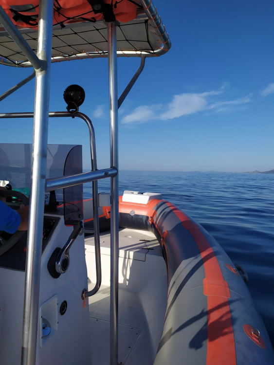Hire RIB with or without skipper Northstar Antibes