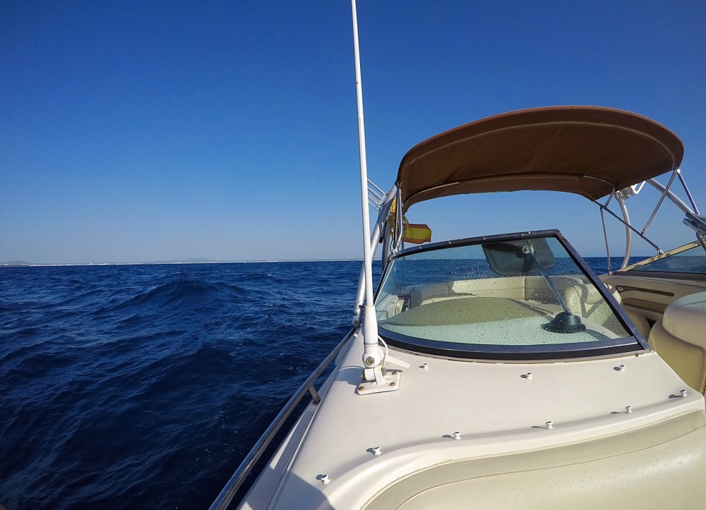 Boat rental Sea Ray Sea Ray 260 Sundeck in Calvià on Samboat