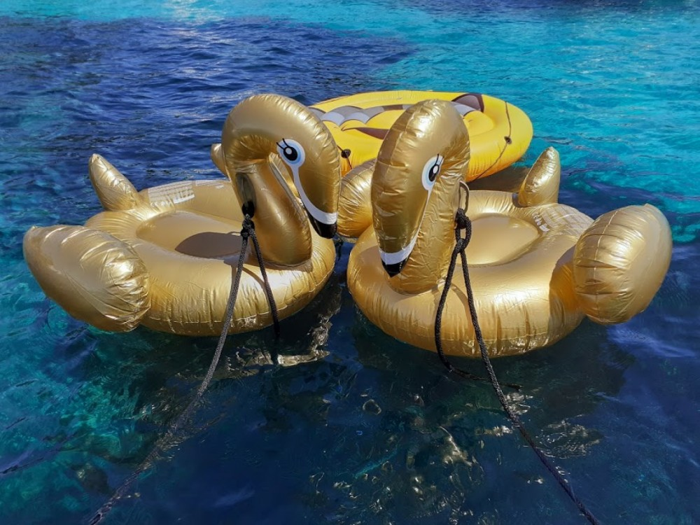 Rental yacht Nice - Four Winns 9 M version luxe on SamBoat