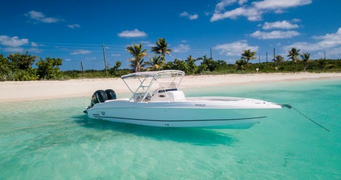 Boat rental Marigot cheap Scarab 32