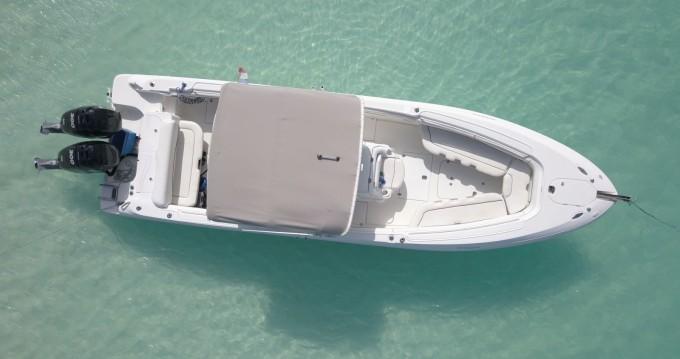 Rental Motorboat in Marigot - Wellcraft Scarab 32