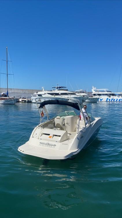 Boat rental Sea Ray 260 SD in Marbella on Samboat