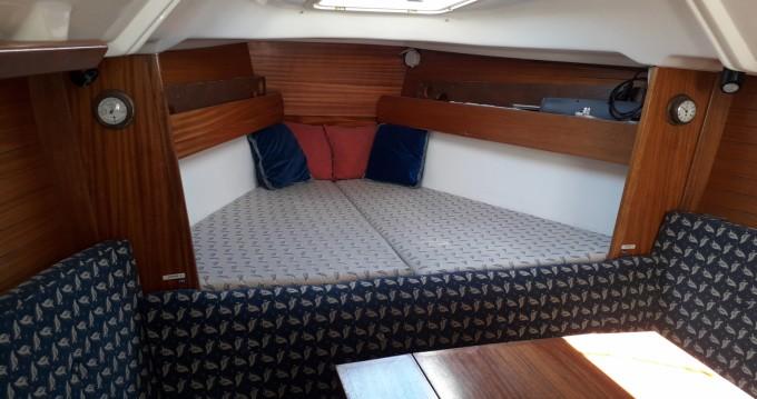 Boat rental Le Barcarès cheap Dufour 30 Classic
