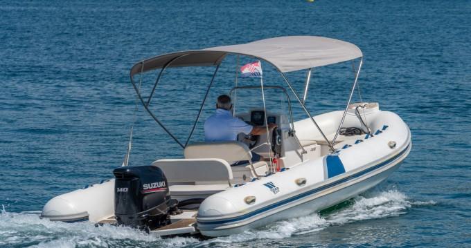 Boat rental Tiger Proline Tigermarine 620 in Poreč on Samboat