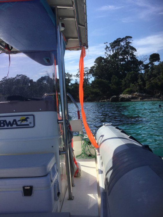 Hire RIB with or without skipper Bwa Cannes