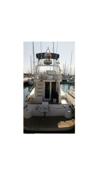 Hire Motorboat with or without skipper ASTINOR Valencia