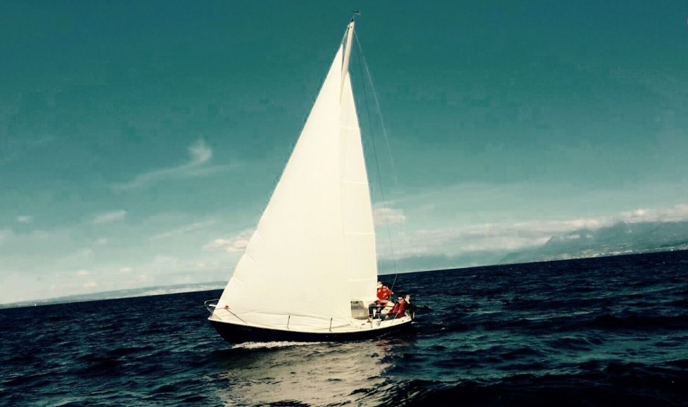 Rental Sailboat Boxer Cantieri with a permit