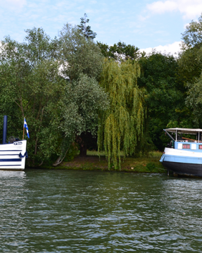 Rental Motorboat in Boulogne-Billancourt - Suntracker suntracker