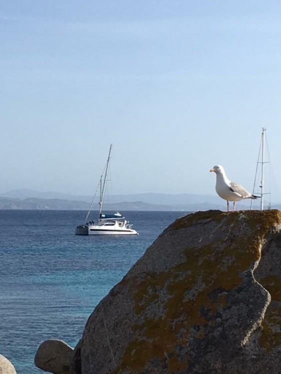 Hire Catamaran with or without skipper Dean l'Estartit