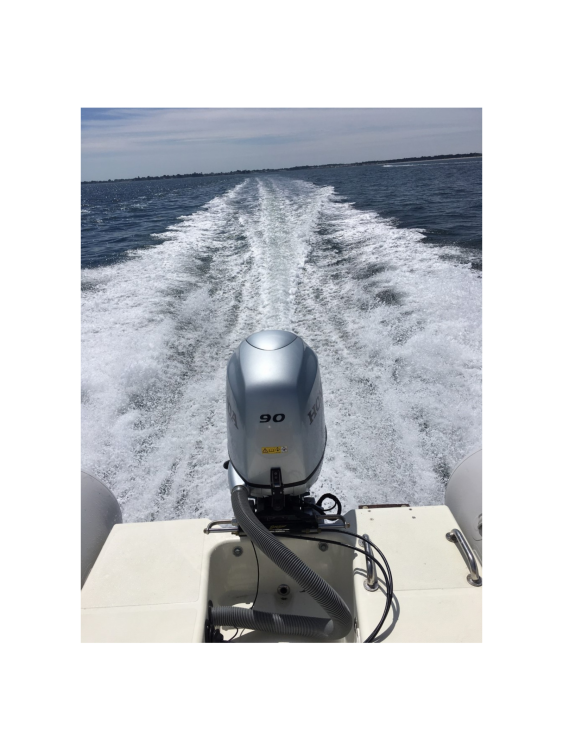 Hire RIB with or without skipper Zodiac Bénodet