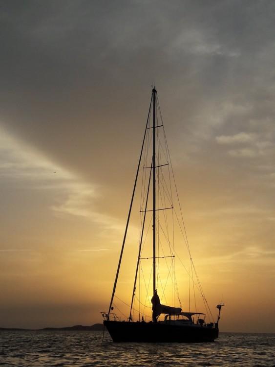 Rent a Trehard Marine NOheea Palma