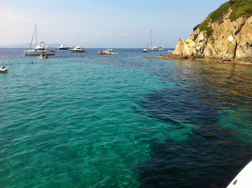 Rental yacht Hyères - Scout Sportfish on SamBoat