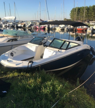Sea Ray SPX 190 OB between personal and professional Biscarrosse