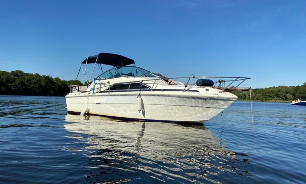 Sea Ray Sea Ray 245 Sundancer between personal and professional Berlin