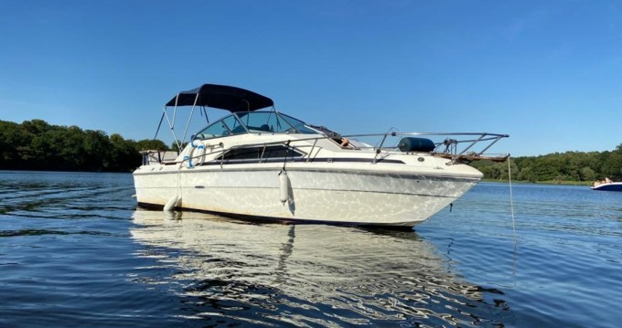 Hire Motorboat with or without skipper Sea Ray Spandau