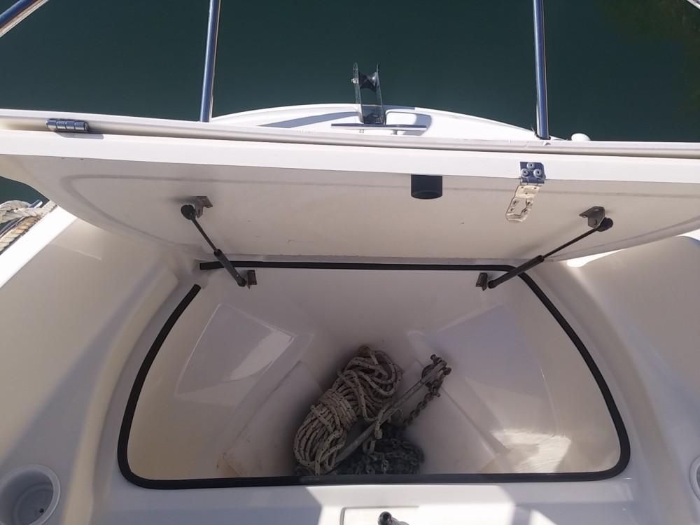 Boat rental Quicksilver Activ 535 Open in Antibes on Samboat