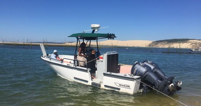 Rental Motorboat in Lège-Cap-Ferret - Boston Whaler Boston Whaler 24 Justice