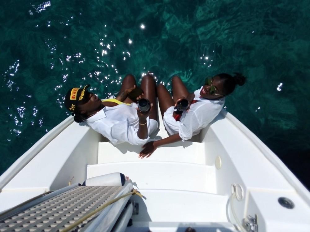 Rental Catamaran in Ano Mera - Lagoon 420