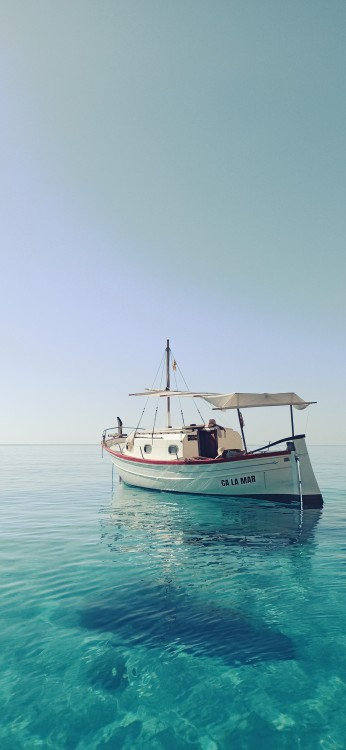 Boat rental Myabca 26 in la Savina on Samboat