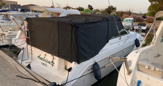 Rental yacht La Londe-les-Maures - Sea Ray Sea Ray 300 Weekender on SamBoat