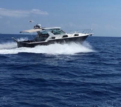 Boat rental Saint-Florent cheap OPEN 3600