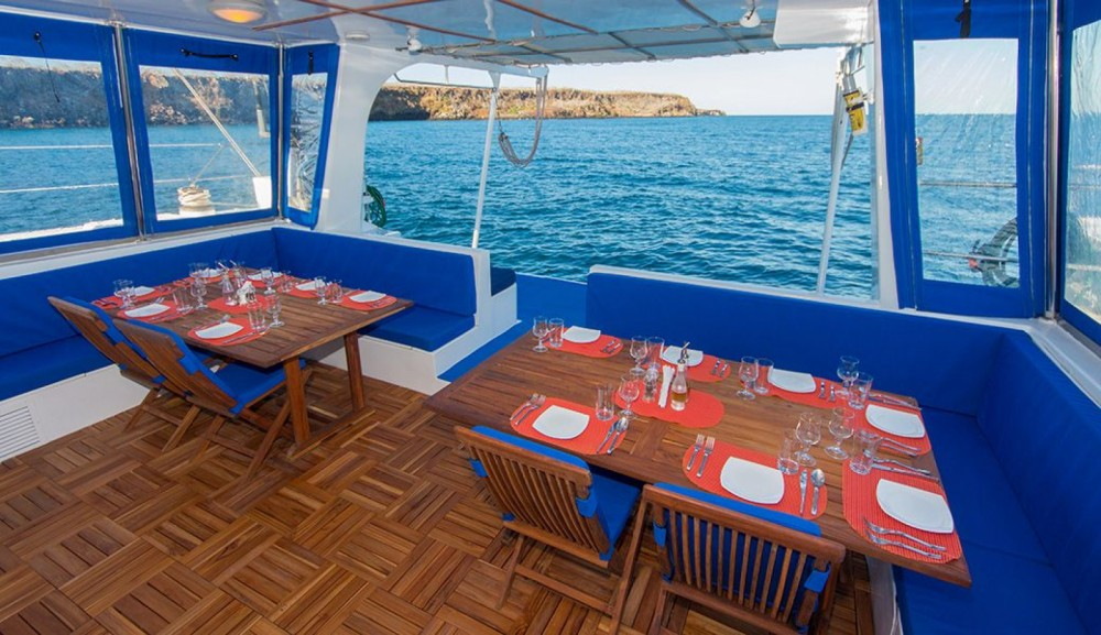 Rental Catamaran Allumarine with a permit