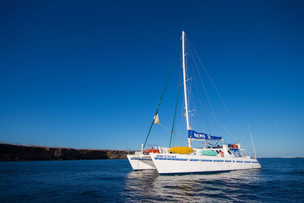 Hire Catamaran with or without skipper Allumarine Galápagos