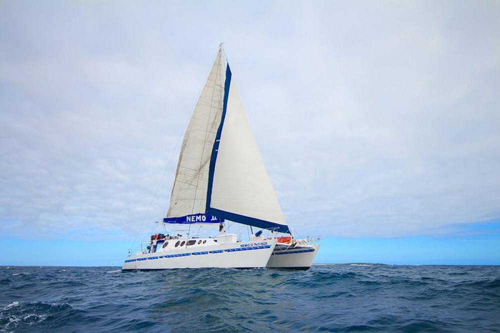 Rental Catamaran in Galápagos - Allumarine 21