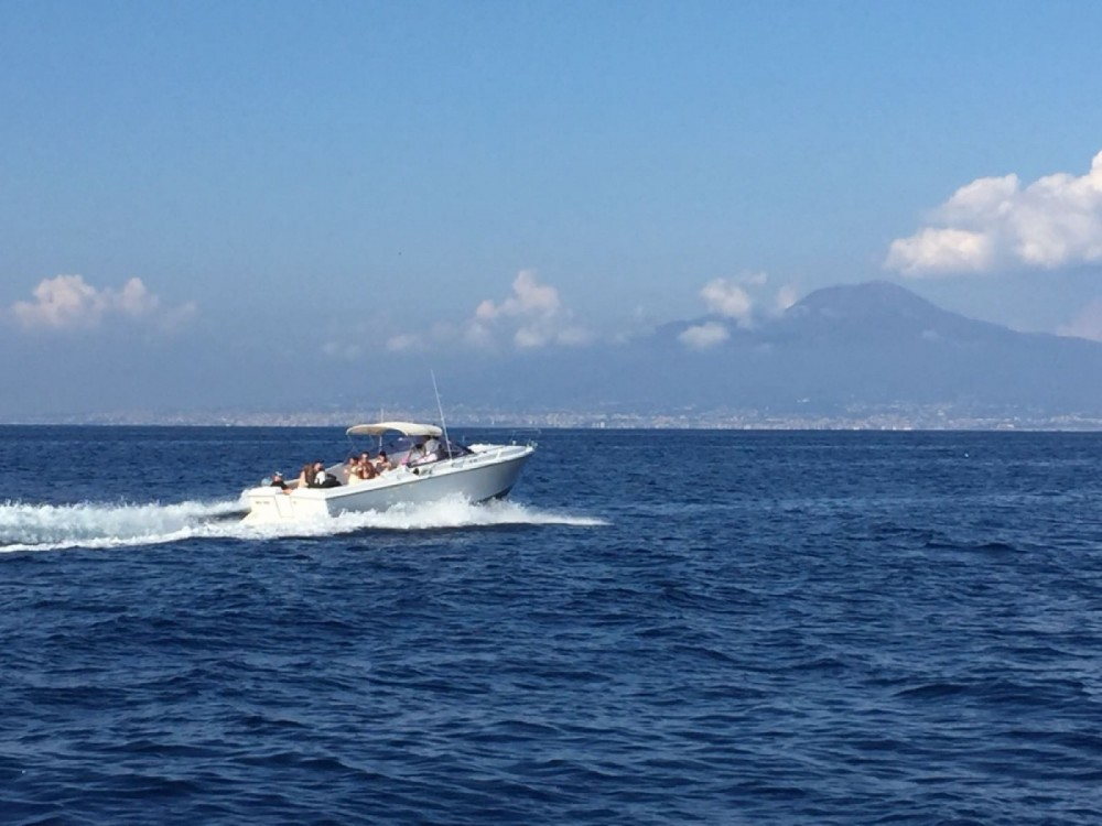 Rental yacht  - Bertram Nord Mare 30' Typo Moppie on SamBoat
