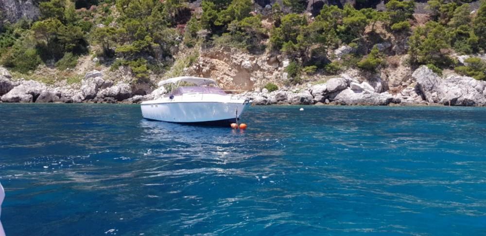 Boat rental Bertram Nord Mare 30' Typo Moppie in  on Samboat