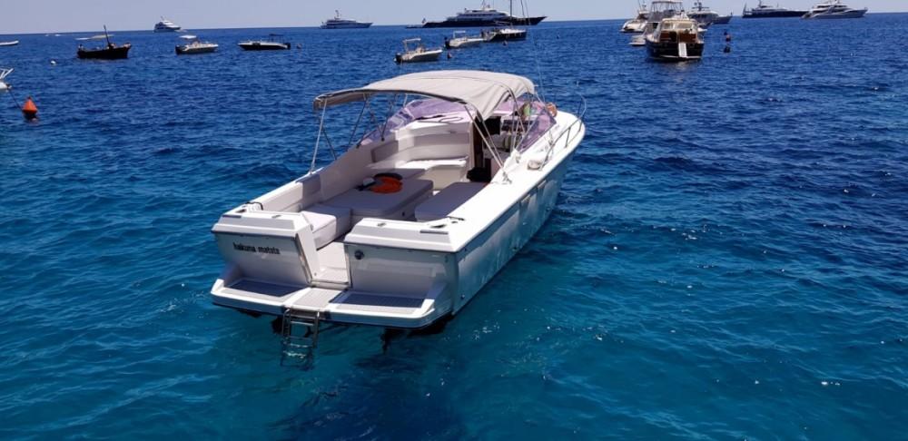Rental Motorboat in  - Bertram Nord Mare 30' Typo Moppie