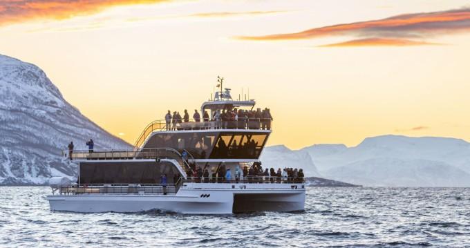 Hire Catamaran with or without skipper Brim explorer Svolvær