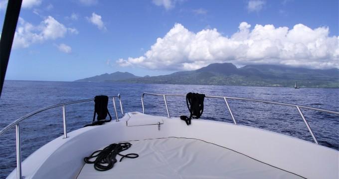 Rental yacht Basse-Terre - Kelt White shark 226 on SamBoat