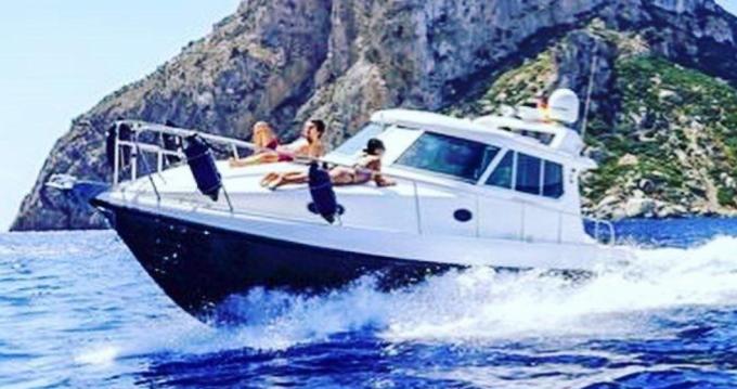 Rental yacht Ibiza Island - Gulf Craft ambassador 32 on SamBoat