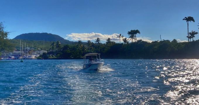 Rental Motorboat in Les Trois-Îlets - Lobster marion 7,3