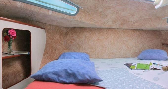 Boat rental Amieira cheap Sedan 1010