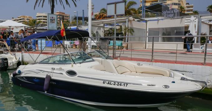 Boat rental Puerto Deportivo de Marbella cheap Sea Ray 240 Sundeck