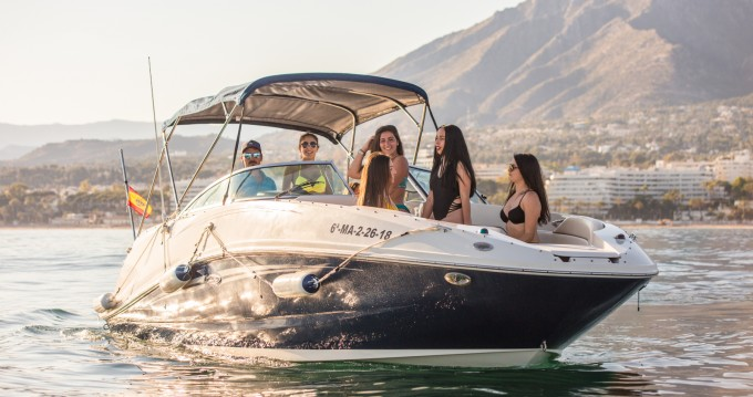 Boat rental Sea Ray Sea Ray 260 Sundancer in Marbella on Samboat