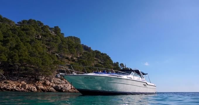 Rental yacht Pollença - Sea Ray Sea Ray 460 Sundancer on SamBoat