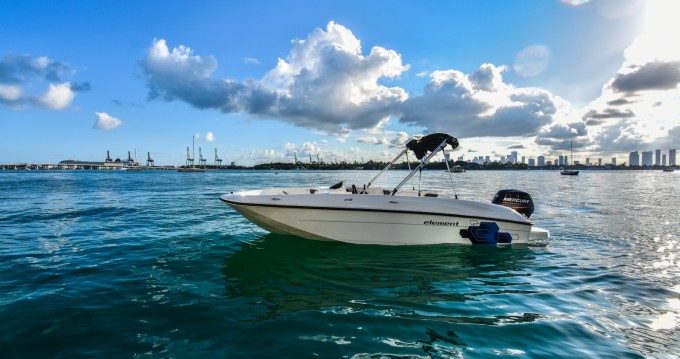 Hire Motorboat with or without skipper Bayliner Miami