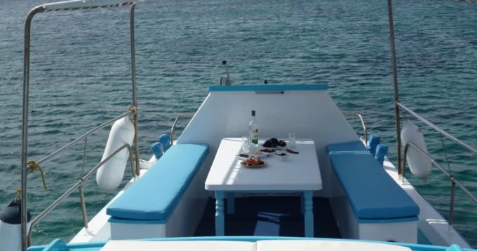 Boat rental Ornos cheap Traditional