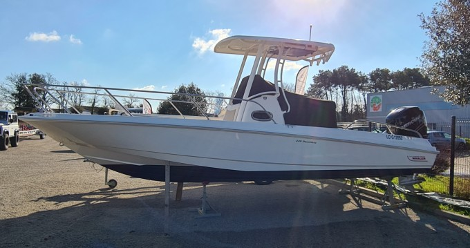 Hire Motorboat with or without skipper Boston Whaler Vannes
