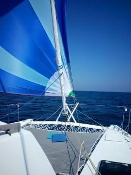 petrachi 32 between personal and professional Ibiza Island