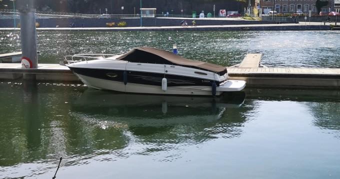 Hire Motorboat with or without skipper Bayliner Arrondissement de Namur