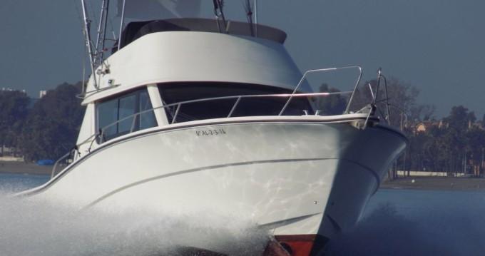 Boat rental Rodman Rodman 1250 Sport in Puerto Banús on Samboat